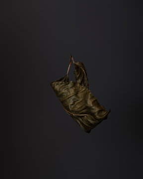 Closeup of dry beech leaf on dark background