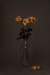 Dried yellow roses on dark background
