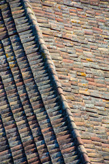 roof tiles seen from above