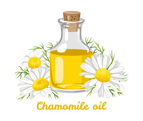 Chamomile essential oil. Glass bottle with chamomile oil and fresh flowers isolated on white background. Vector illustration in cartoon flat style.