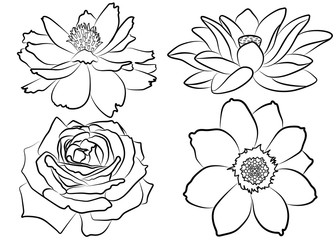 Flowers coloring set