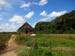 Casa de campo en viñales - Cuba