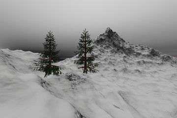 Snowy mountain, a winter landscape, coniferous trees, rocks and gray clouds in the sky.