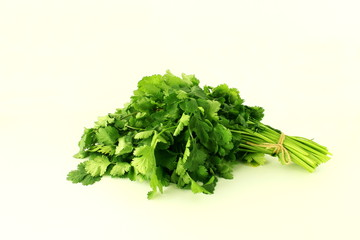 coriander green leaves bunch in white background