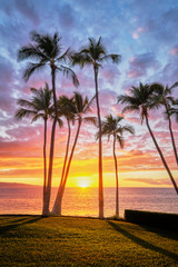 Hawaiian Sunset with palm trees on the beach