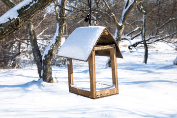 nesting box or feeding trough in winter snowy park