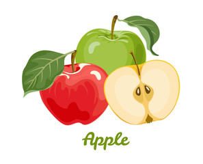 Apples isolated on white background. Red and green apples with leaves. Vector illustration of ripe fruits in cartoon flat style.