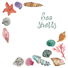 A set of sea shellfish painted in watercolor, isolated on a white background, with a calligraphic inscription. Hand painted for beautiful invitation design, greeting cards, posters and bags. Starfish