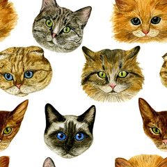 Seamless pattern with cat muzzle. Watercolour hand drawn illustration. Great for printing on T-shirt, pillow, poster, cards, stickers, etc.