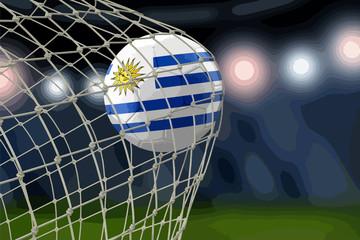 Uruguayan soccerball in net