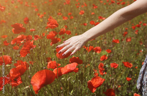 Beautiful girl is standing on summer field full of red poppy flowers