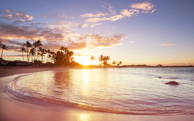 Fototapete - Hawaiian beach at sunrise