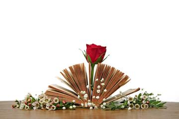 Bibel mit Rose