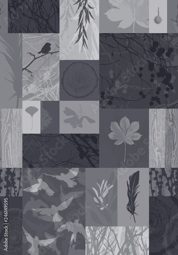 Wall mural Backgrounds of nature. Set of silhouettes of different trees for your design. Vector illustration
