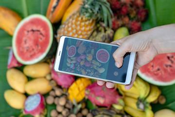 Woman hand take phone photography of tropical fruits. Smartphone photo of breakfast. Sweet mango, papaya, pitahaya, banana, watermelon, pineapple. Raw vegan vegetarian healthy food