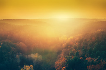 Sun setting above forest in aerial view.