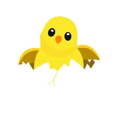 hatching chick emoji