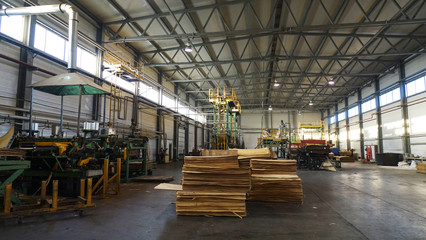 Shop for the production of plywood. Processing of business wood. Woodworking industry.