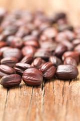 close up of dried jojoba seeds on the wooden table