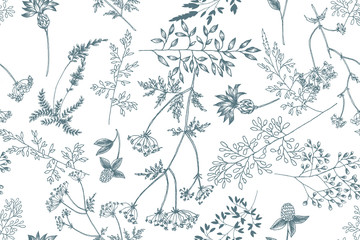 Wild flowers blossom branch seamless pattern. Vintage botanical hand drawn illustration. Spring herbal flowers with different plants of vintage garden and forest. Vector design. Can use for greeting c
