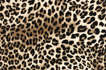 Ingelijste posters Luipaard Leopard fablic texture. Fashion textile background.