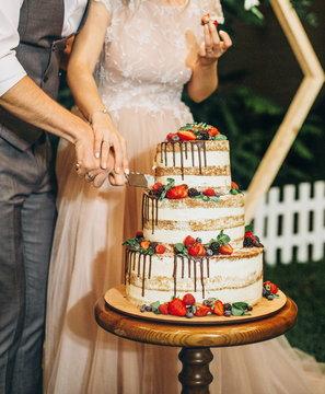 festive cake three tiers fresh fruit celebration