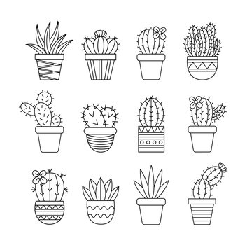 Cute cactus set, different types of cacti in patterned plant pots, vector illustrations, succulent isolated outlined icon collection.