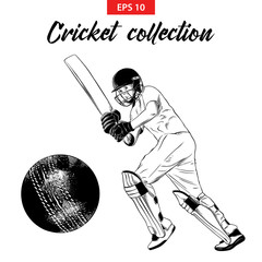 Vector engraved style illustration for logo, emblem, label or poster. Hand drawn sketch set of cricket elements isolated on white background. Detailed vintage doodle drawing.