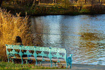 Alte himmelblaue gusseiserne Parkbank im herbstlichen Sonnenschein am Seeufer mit einer Person von hinten