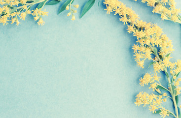 Summer yellow wild flowers on blue background. Springtime floral. Flat lay, top view, copy space. Fototapete