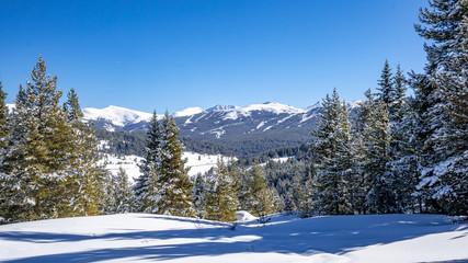 Vail Pass Winter Landscape 2