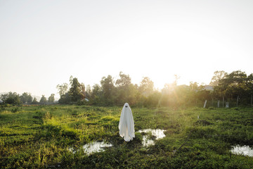 Person in ghost costume standing in grassy field during sunset