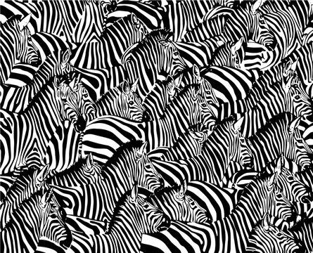 Graphical abstract illustration, zebra pattern, modern design cover, vector illustration