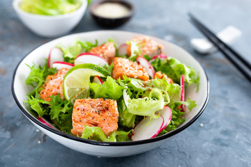 Healthy lunch salad with baked salmon fish, fresh radish, lettuce and lime