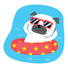 Summer Dog On Inflatable