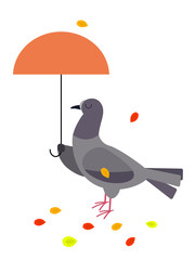 A dove with a parasol