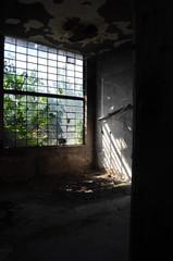 lost place window