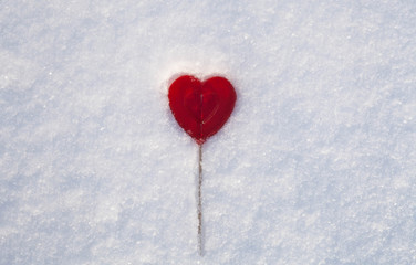 Sweet One Valentines heart made of sugar with reflection effect on snow