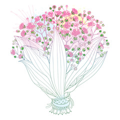 Vector bride bouquet of outline Gypsophila or Baby's breath branch, bud and elegant flower in pastel pink isolated on white background. Ornate contour Gypsophila bunch for romantic wedding design.