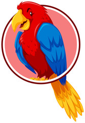 A parrot in circle template