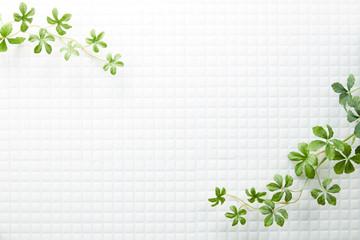 モザイクタイル-白-植物-真俯瞰