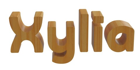 xylia in 3d name with wooden texture