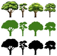 Set of tree different design