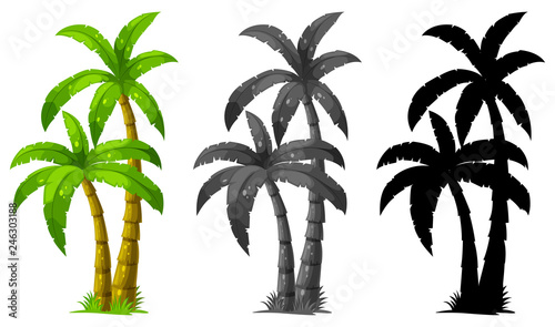 Wall mural Set of palm tree