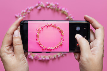 woman hands takes flower wreath photo from mobile smart phone or cell phone digital camera