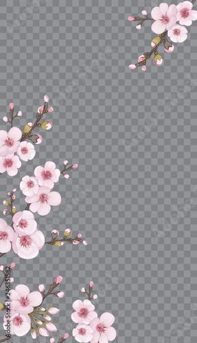 Festive Frame Vertical Of Sakura Flowers Handmade Background In