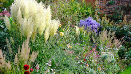 Colourful late summer flower garden border in a walled garden