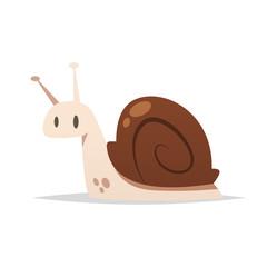 Snail vector isolated illustration