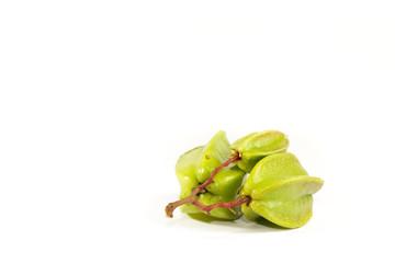 Leaf Star fruit Close up