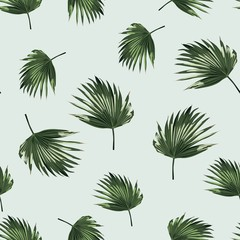 Tropical background with jungle plants. Seamless tropical pattern with palm leaves. Light blue background.